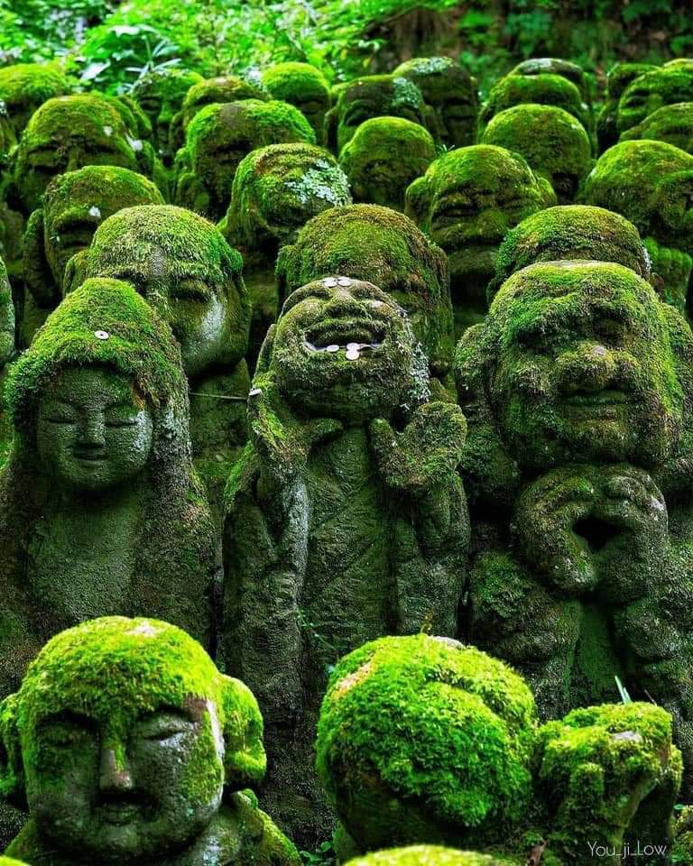 The coolest temple in Kyoto. 1200 stone sculptures of rakan, Buddha's disciples, all with different facial expressions and poses
